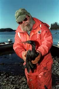 A fisherman carries a bird coated with oil that spilled from the Exxon Valdez tanker that ruptured off of the Alaskan coast.