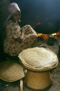 An Ethiopian woman is making injera bread over a eucalyptus wood fire.