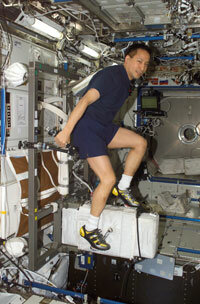 Astronaut Edward T. Lu exercises on the Cycle Ergometer with Vibration Isolation System (CEVIS) in the Destiny laboratory on the International Space Station (ISS). Why are astronauts onboard the ISS working out all the time? See more astronaut pictures.