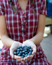 Blueberries can help lower the risk of heart disease and cancer.
