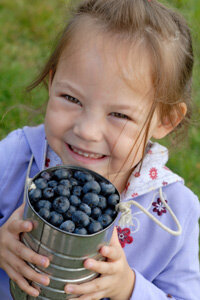 Blueberries are full of antioxidants!