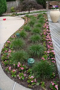 Colorful annuals and mulch create a well-manicured garden.