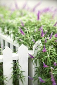 Just because a section of fencing is bad doesn't mean the whole fence has to be replaced. Follow these fence repair tips.