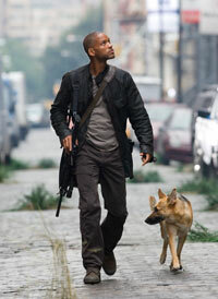 "Will Smith stars as Robert Neville in ""I Am Legend."" See more movie images."