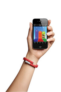 The Jawbone UP is a system that's one part wristband and one part iOS app.