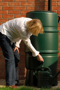 Rainwater is perfect for watering your plants, flowers and grass. You can also use it to wash your car.