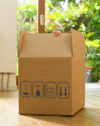 This is more than a box. Can't think of any way to reuse it? We've got 10!