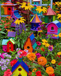 Colorful birdhouses can be a great decorative addition to your garden party -- and the guests can each take on home at the end!