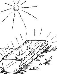 Cook a hot dog -- with the sun!