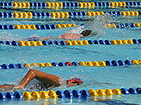 Swimming is an excellent all-body workout for when you need to switch-up your routine.