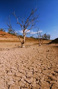 Climate change will likely cause lake beds to dry up one year and refill the next.