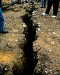 Earthquake Deferral Technology converts seismic vibrations to usable power.