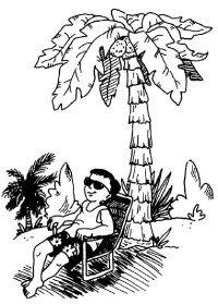 Grow a tropical tree.