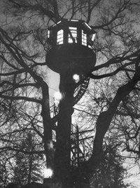 A towering spiral staircase leads up to a round and glowing tree house.