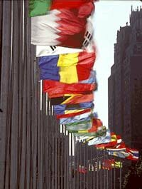 Flags of U.N. member states at headquarters in New York. See pictures of the United States flag.