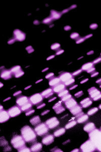 One criticism some researchers level at DNA testing companies is that their results can be difficult to understand.