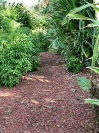 Mulches are a multipurpose any garden. See more pictures of vegetable gardens.