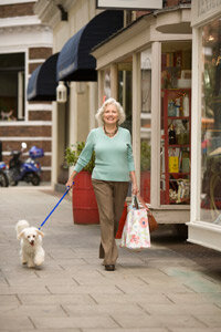 Living in a well-stocked walkshed allows you to multitask and take the pooch along for the outing.