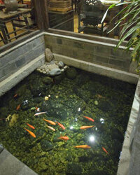 This goldfish pond at the Zen Garden Hotel in Lijang, China, would be a good addition to your own zen garden.