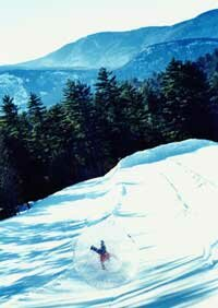 A zorb and its passenger tumble down a snowy hill.