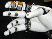 A robotic hand, developed by NASA, is made up of metal segments moved by tiny motors. The hand is one of the most difficult structures to replicate in robotics.