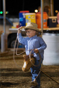 Cattle sorting and penning are often cast as family-oriented sports, safe for young children to try.