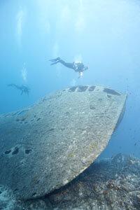 DAN has membership plans for professional and sport divers.