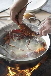 Can lobsters feel the pain of that boiling water?
