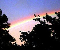 Rainbows are easily one of nature's most beautiful effects. See more rainbow pictures.