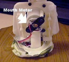 This electric motor is used to move the jaws and simulate the singing.