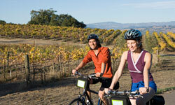 Biking through a vineyard can be a great way to get a close-up view. Just be sure to bike before you taste!