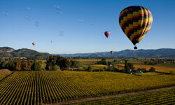 For a bird's-eye view of Napa Valley's vineyards, there's nothing quite like a hot air balloon ride.