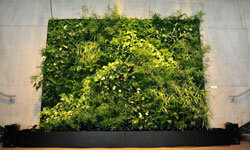 This eco-friendly green wall was on display at the Sustainable Luxury Fair in Paris in 2010.