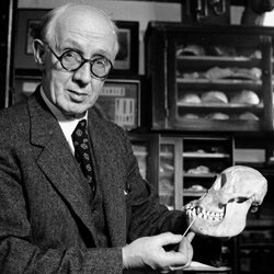 Dr. Alvan T. Marston explains that the Piltdown skull is a hoax.