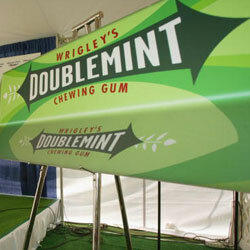 "What other gum can ""double your pleasure, double your fun""?"