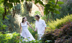 A secret garden theme is for the romantic bride who loves lush flowers and serene settings.