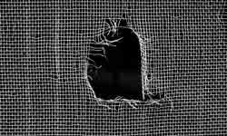 If you have holes in your window screens, it's a good idea to patch them up to keep pests out.