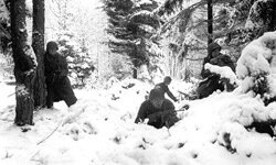 A photograph of the real Battle of the Bulge, complete with a very snowy Belgian forest.