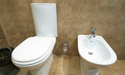 Bidets may sit next to toilets, or the functionality can be built into the toilet itself.