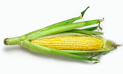 Corn is cheap, versatile and delicious! See more vegetable pictures.