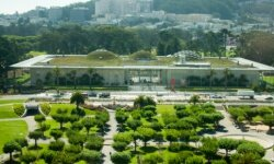 The new California Academy of Sciences building, another Renzo Piano work