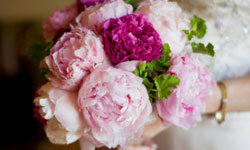 A showy bouquet of perfectly pink peonies looks timeless and au courant.