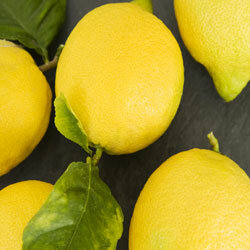 It's a tart little fruit, but a lemon is incredibly useful. See more fruit pictures.