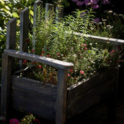 It's easy to convert an old garden bench into an actual part of your garden.