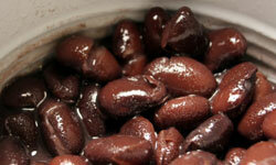 A can of black beans might not seem like much, but you'll be surprised by the diverse assortment of dishes it can make.