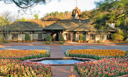 What better setting for the Biltmore winery than amid a gorgeous display of carefully selected seasonal blooms?
