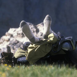 Wool or synthetic socks are your best bet. Cotton will hold onto moisture, rub more and cause blisters.