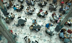 Imagine you're enjoying your lunch in the mall food court, when suddenly your fellow diners burst into song.