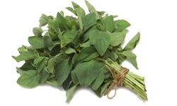 Oregano is popular in Mediterranean cooking and has a distinct aroma.