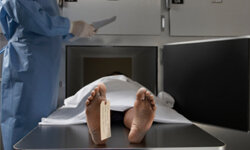 Real human bodies (cadavers) have played a significant role in crash safety testing.